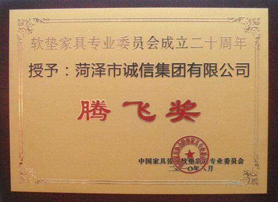 中国ballbet贝博网页登录行业腾飞奖